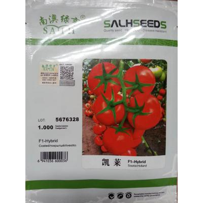 南澳绿亨 凯莱 番茄种子