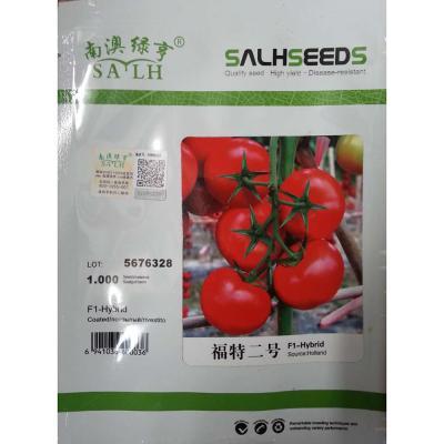 南澳绿亨 福特二号 F1  番茄种子